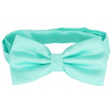 Mint Mens Bow Tie