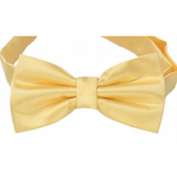 Light Gold Mens Bow Tie