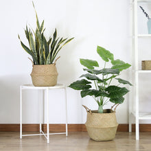Woven Plant Basket (3 sizes)