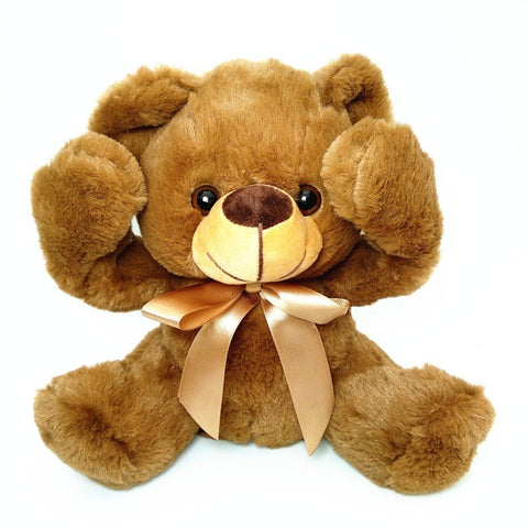 Peluche ours Teddy