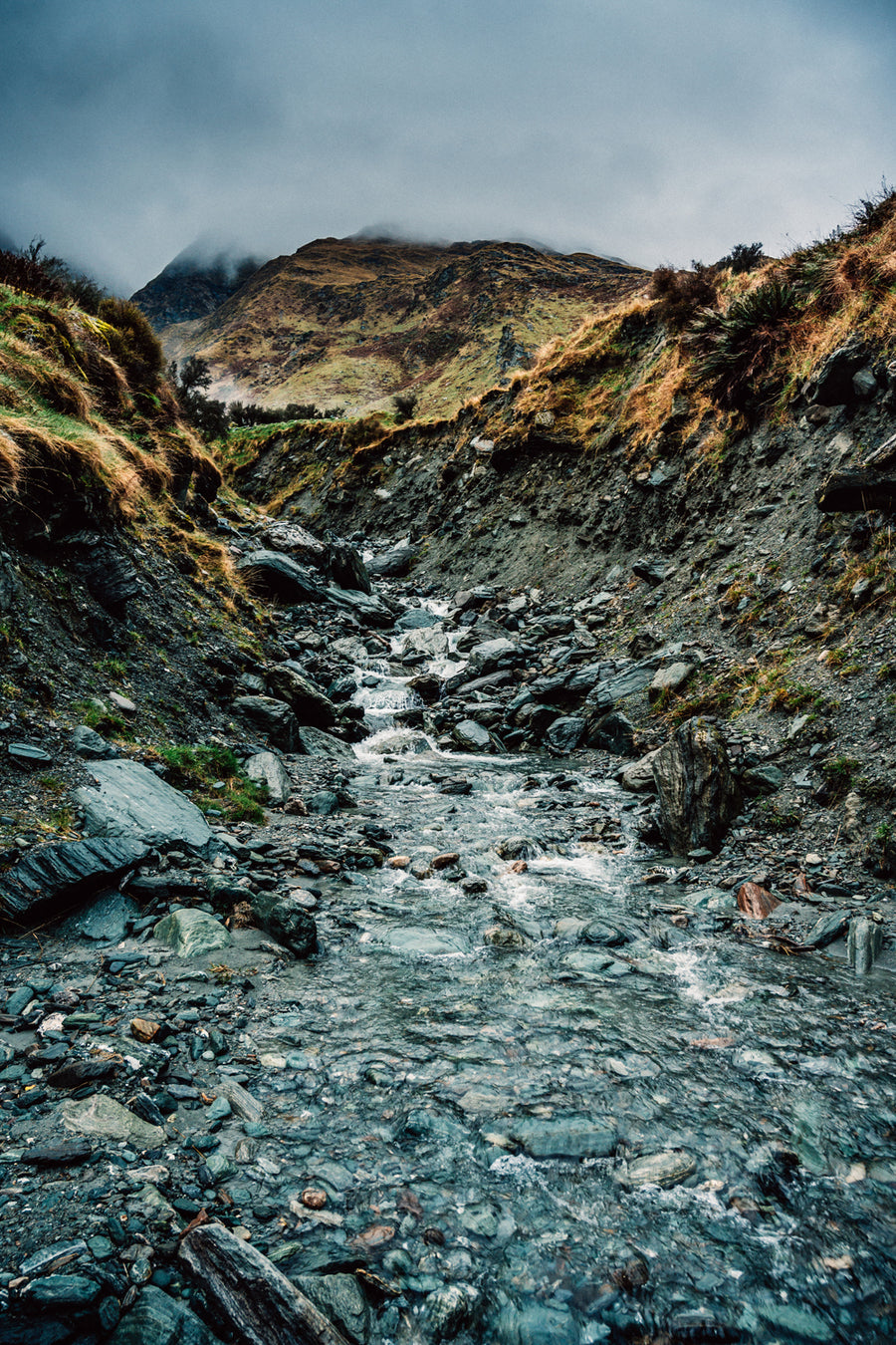 Mt Aspiring National Park - AP0059