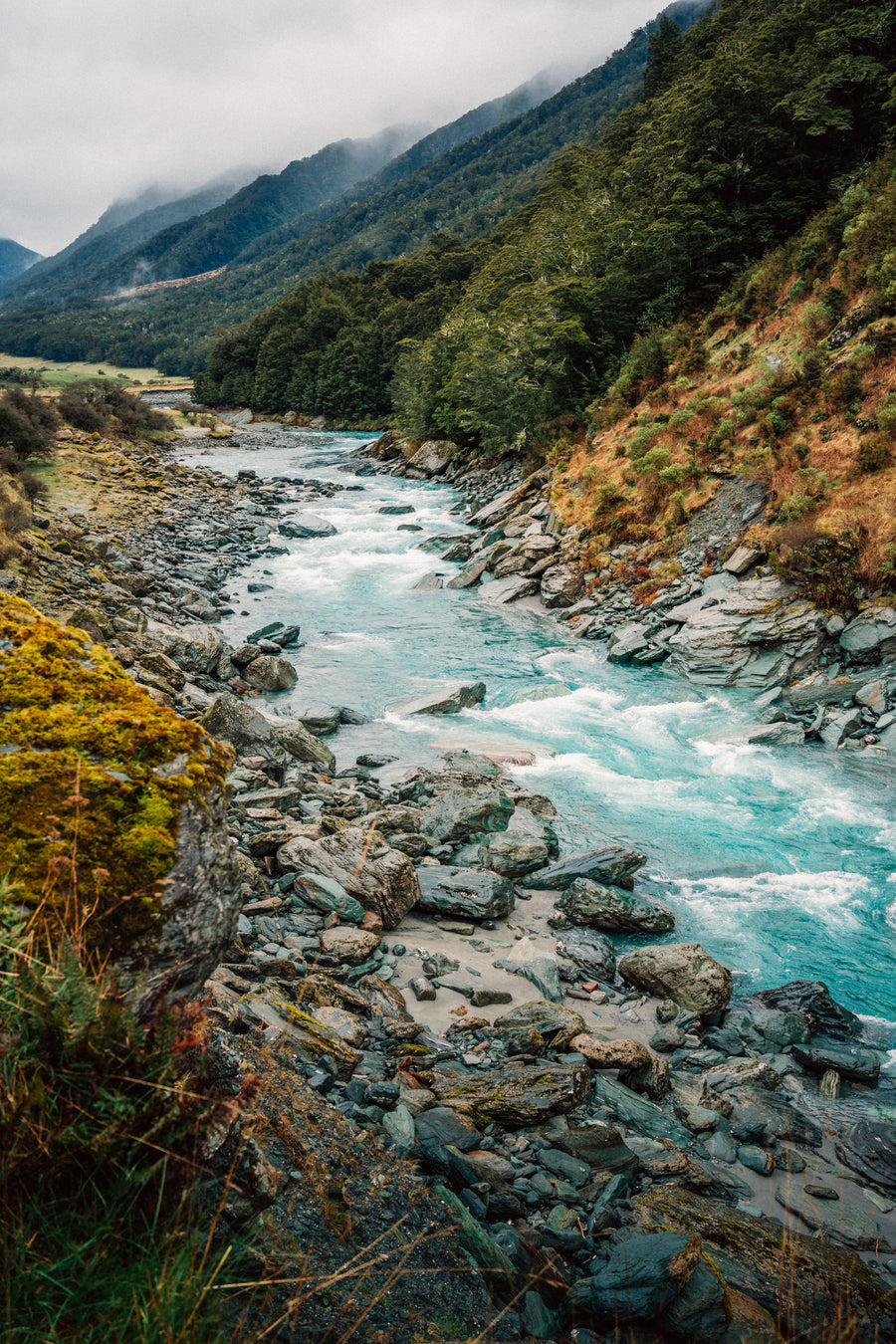 Mt Aspiring National Park - AP0060