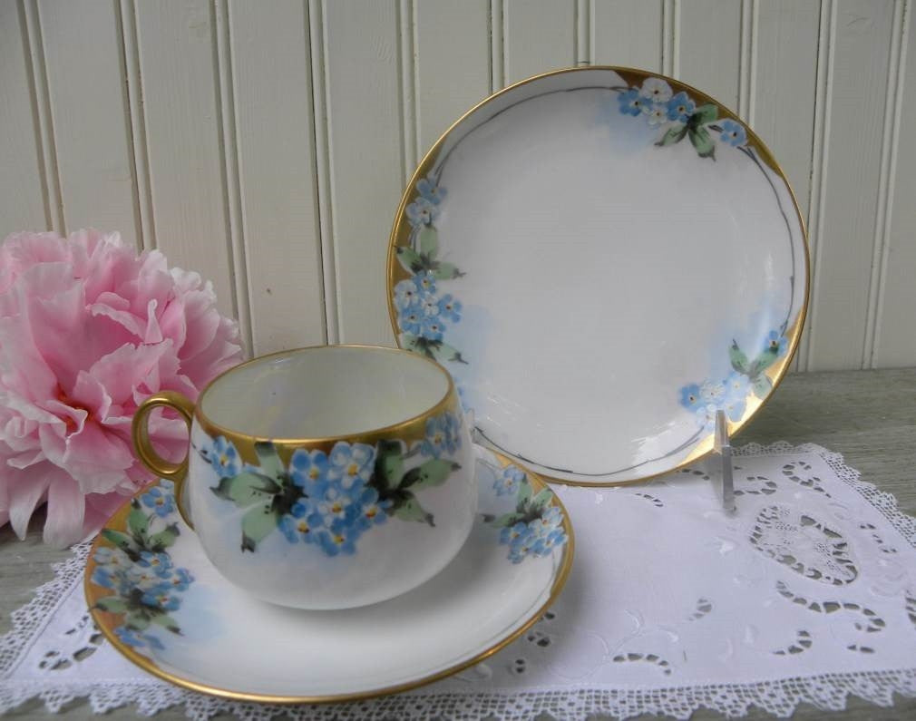 Vintage Hand Painted Forget Me Not Teacup and Dessert Plate - The Pink Rose Cottage