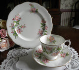 3 Pc Royal Albert Evesham Pink Blossoms Teacup Saucer and Luncheon Plate - The Pink Rose Cottage