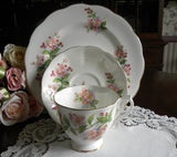 "Royal Albert ""Evesham"" Pink Blossoms Teacup Saucer and Luncheon Plate - The Pink Rose Cottage"