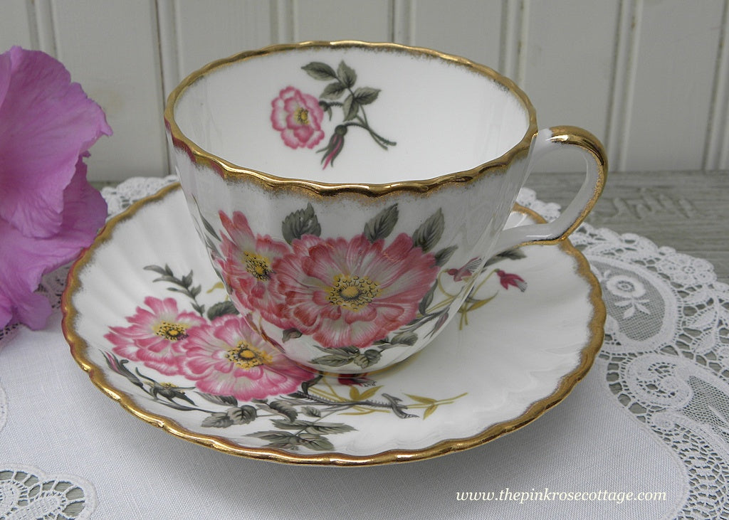 Vintage Adderley Pink Wild Roses Teacup and Saucer - The Pink Rose Cottage