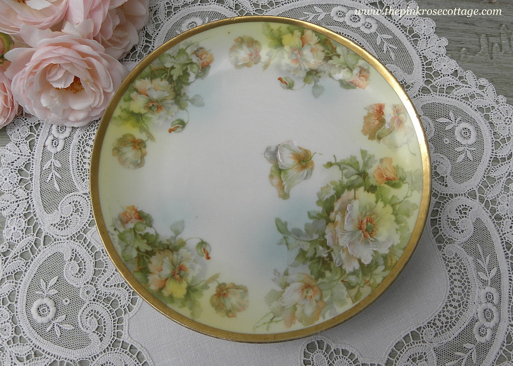 Vintage Hand Painted White and Peach Wild Roses Plate