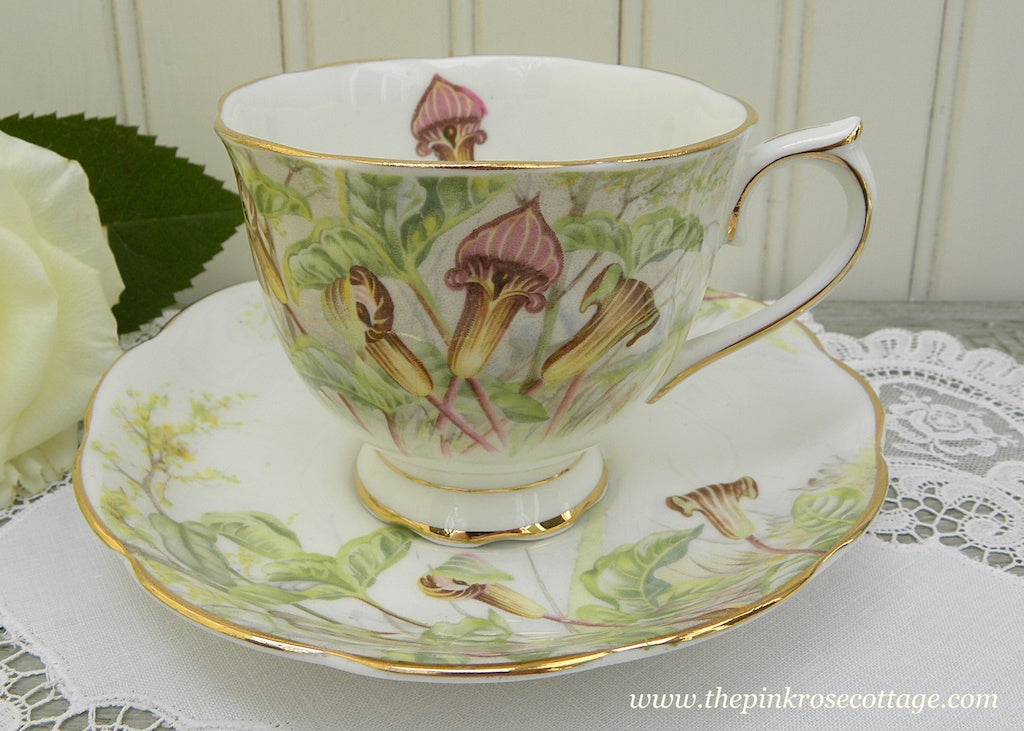 "Vintage Royal Albert ""Jack-in-the-Pulpit"" Teacup and Saucer"