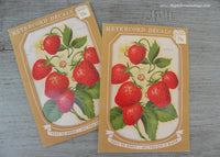 2 Vintage Strawberries and Strawberry Blossoms Meyercord Decals