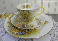 Vintage Shelley Daffodil Time Teacup Saucer and Luncheon Plate