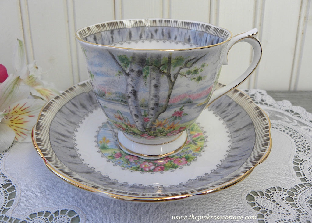 Vintage Royal Albert Silver Birch Teacup and Saucer