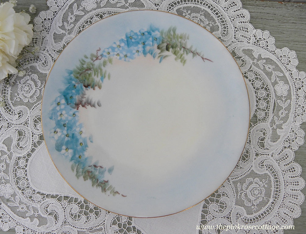 Vintage Hand Painted Blue Forget-Me-Nots Flower Plate Barvaria