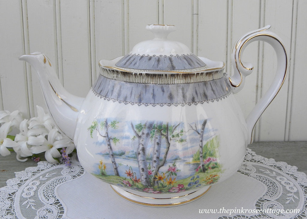 Vintage Royal Albert Silver Birch Teapot