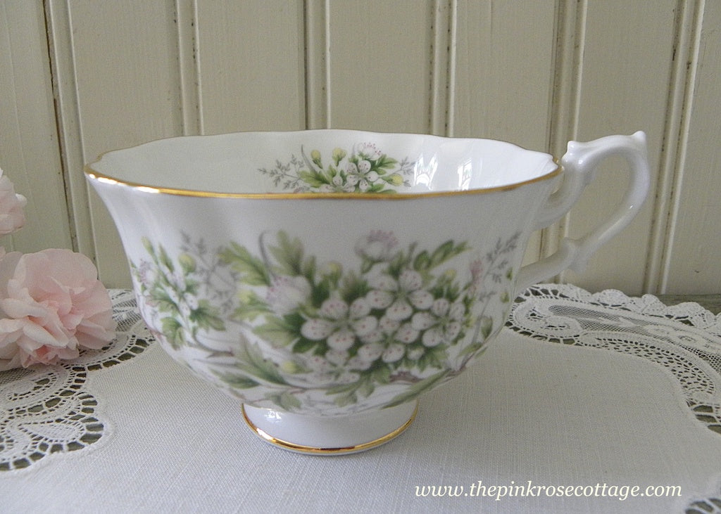 Vintage Mountain Laurel Shelley Teacup