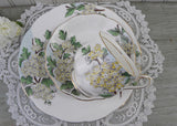 Vintage Royal Albert Flower of the Month Teacup & Plate Trio No 5 Hawthorn