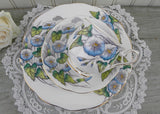 Vintage Royal Albert Flower of the Month Teacup & Plate Trio No 9 Morning Glory