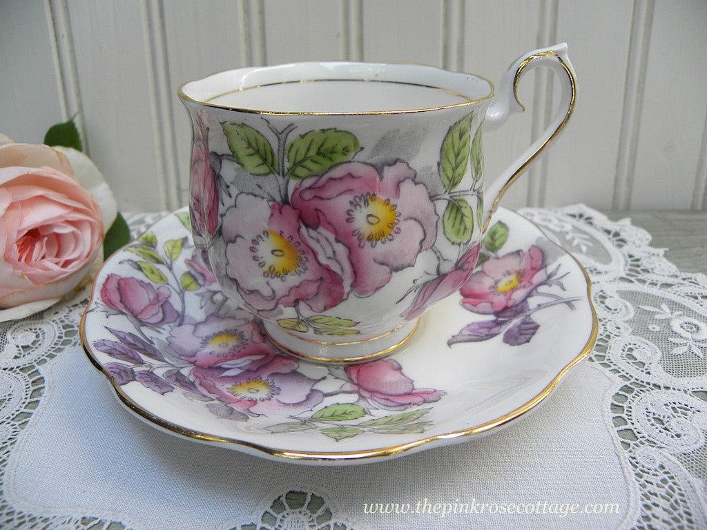 Vintage Royal Albert Flower of the Month Dog Rose No 6 Teacup and Saucer