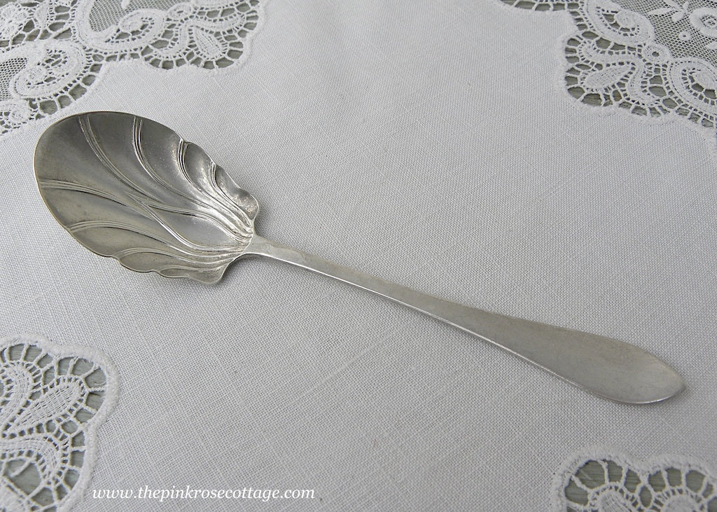Antique Sterling Silver Shelled Sugar Spoon