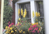For Your Garden Window Boxes by Carol Spier Hardcover Book