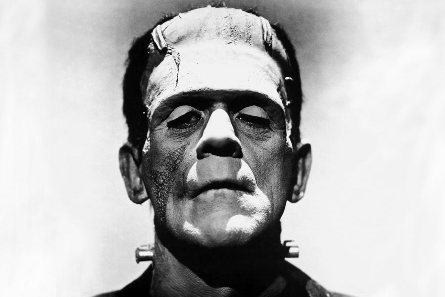 The Frankenstein effect – why whistleblowers are needed now, more than ever