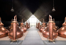 Stauning whisky Guided Tour at the Distillery - in English
