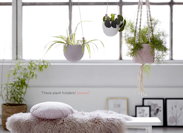 Suspension pour plante en coton blanc