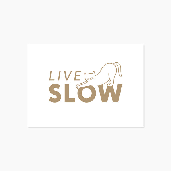 Carte Chat Live Slow