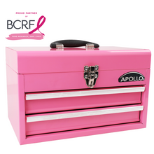 2-Drawer Pink Steel Chest -- DT5010P