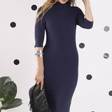 Navy Zara Funnel Neck Dress