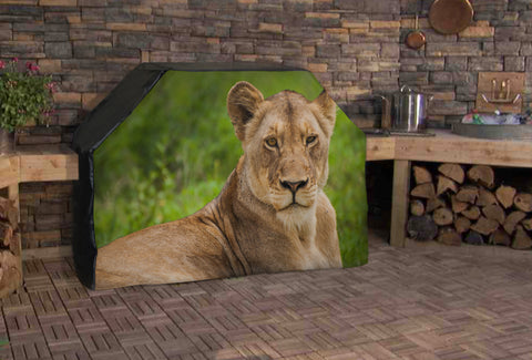 Lioness Resting Full BBQ Grill Cover