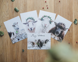 Postcards - set of 5