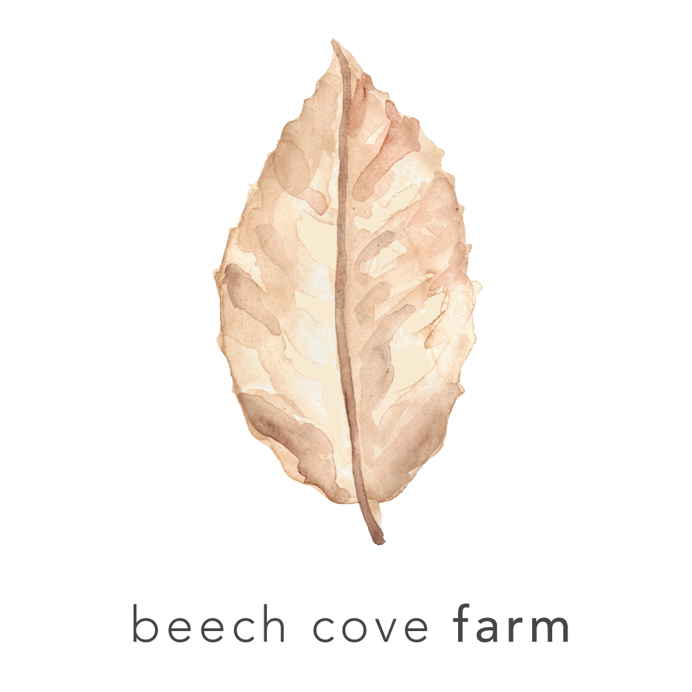 Beech Cove Farm