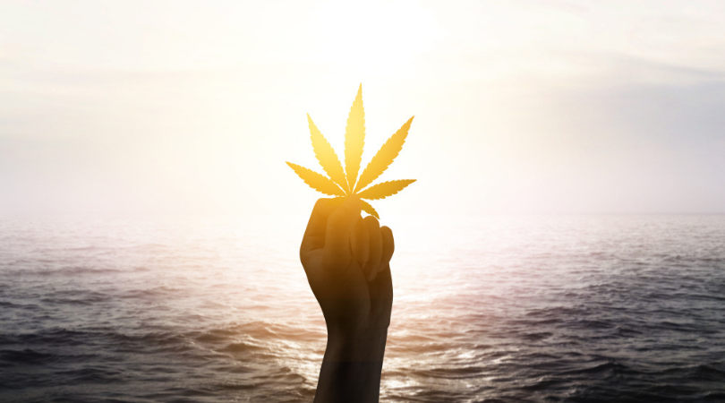 Best Travel Destinations for Stoners