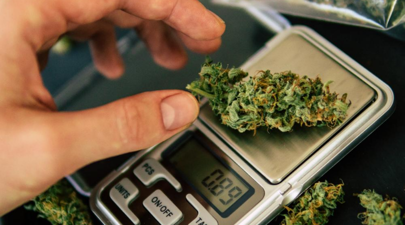 How to Measure Weed Without a Scale