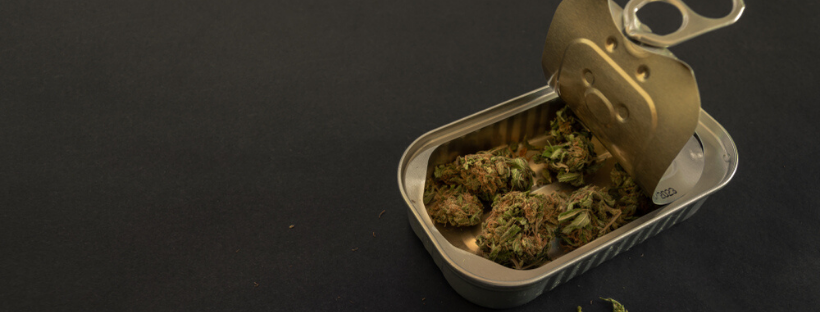 Storing Your Cannabis In A Cannabis Humidor