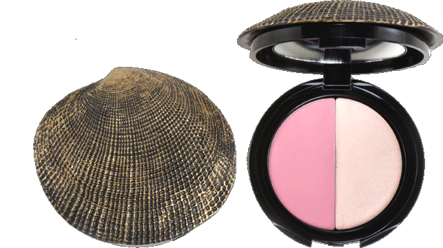 DuWop Isla Sirena Seashell Cheek Dual