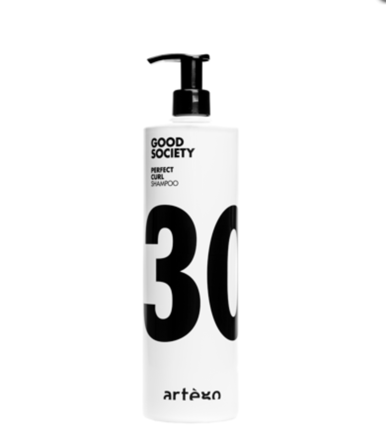 Artego Good Society Perfect Curl Shampoo - 30