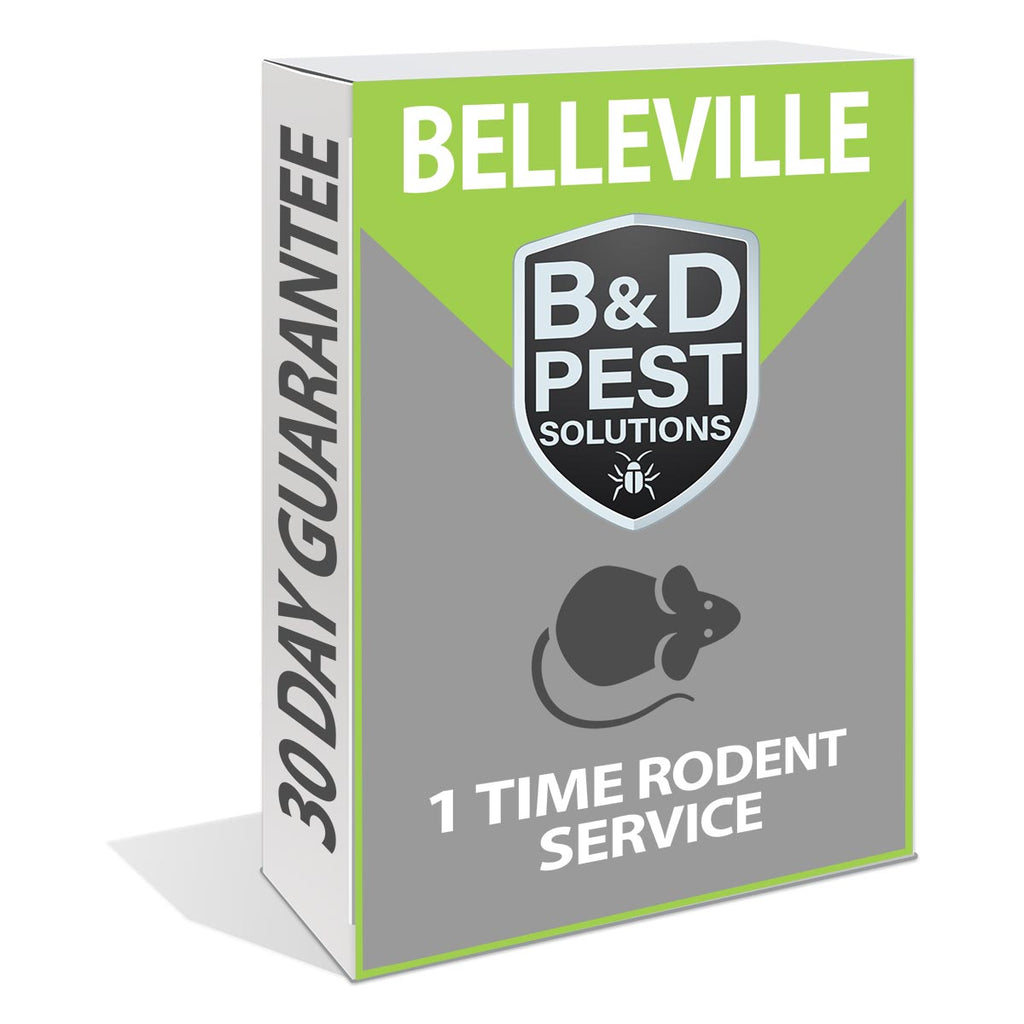 Belleville 1 Time Rodent Service (30 Day Guarantee)