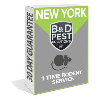 New York 1 Time Rodent Service (30 Day Guarantee)
