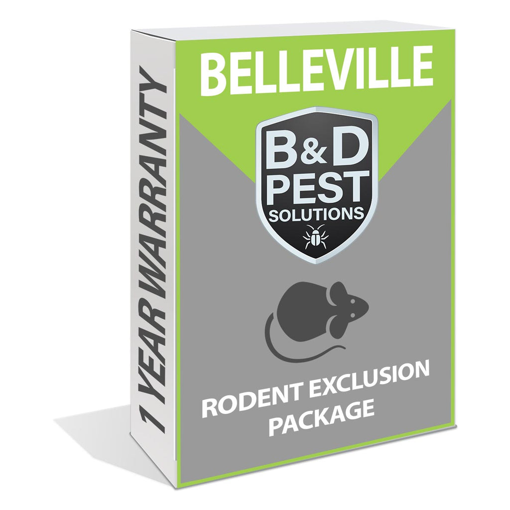 Belleville 1 Year Rodent Exclusion Package (12 Month Guarantee)