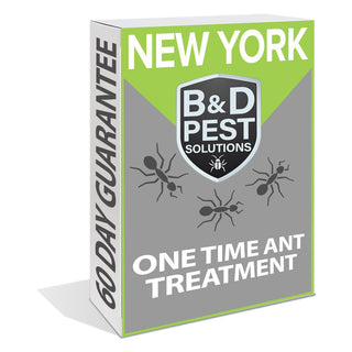 New York One Time Ant Treatment (60 Day Guarantee)