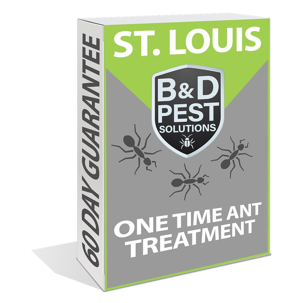 St. Louis One Time Ant Treatment (60 Day Guarantee)