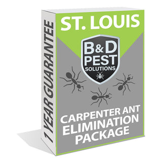 St. Louis Carpenter Ant Elimination Package (1 Year Guarantee)