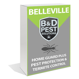 Belleville Home Guard Plus Pest Protection & Termite Control (12 Month Guarantee)