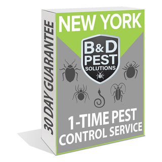 New York 1-Time Pest Control Service (30-Day Guarantee)
