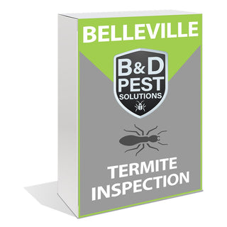Belleville Termite Inspection