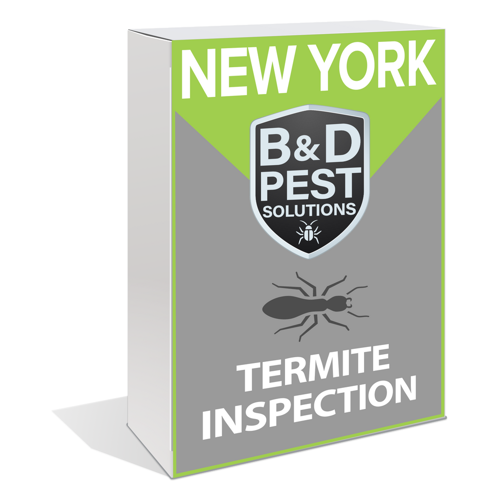 New York Termite Inspection