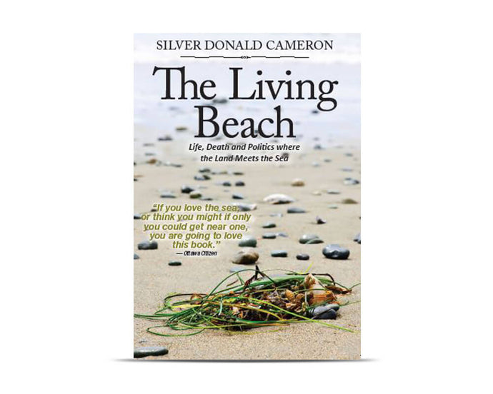 The Living Beach cover