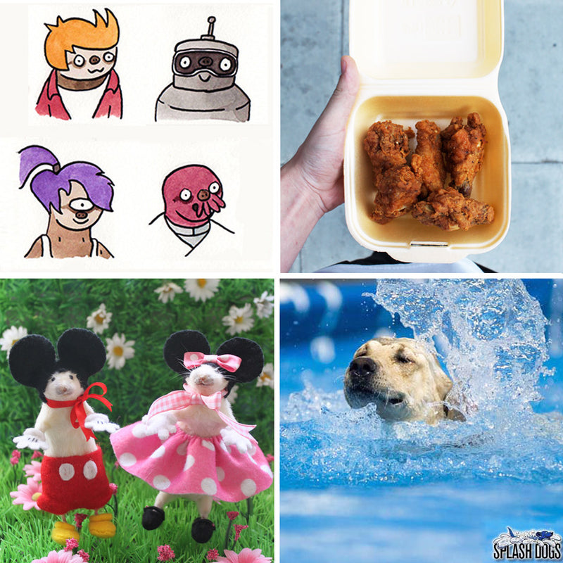 See You Next Tuesday: Sloth Stars, Mini Mice and Splash Dogs.