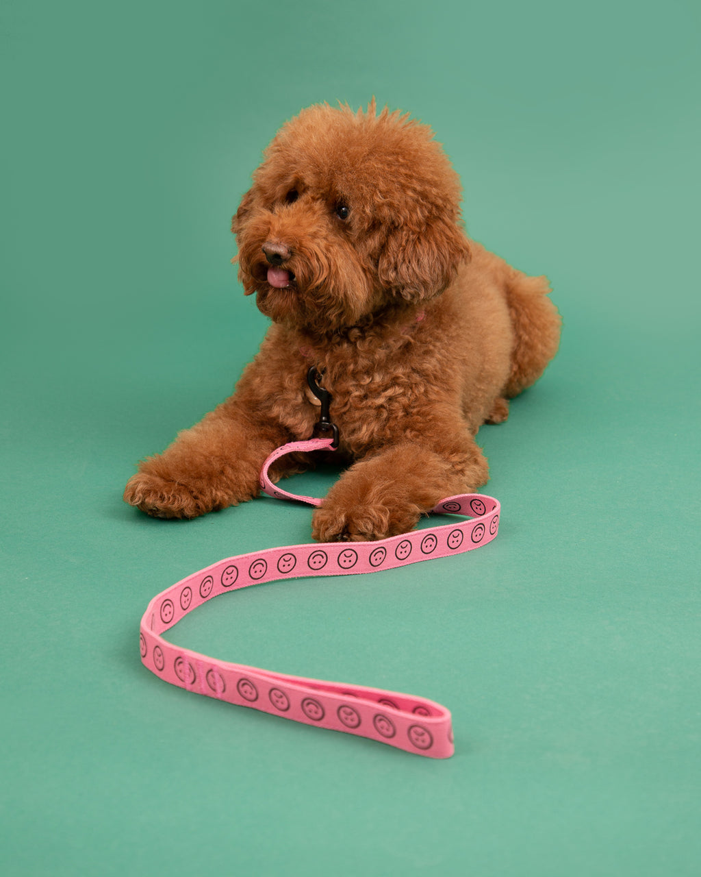 Lazy Oaf Pink Happy Sad Dog Lead